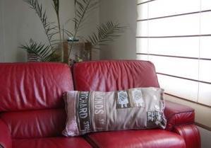 prix cras s sur les coussins d coratifs pour canap deco ethnique. Black Bedroom Furniture Sets. Home Design Ideas