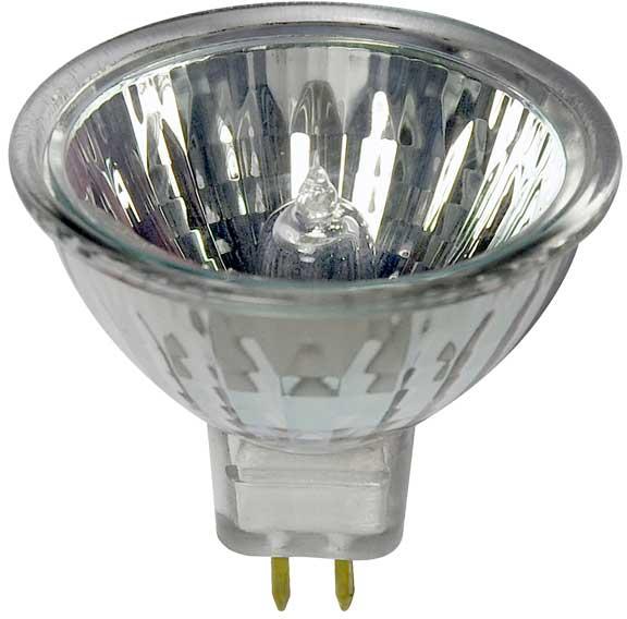 Quels types d'ampoules choisir ?