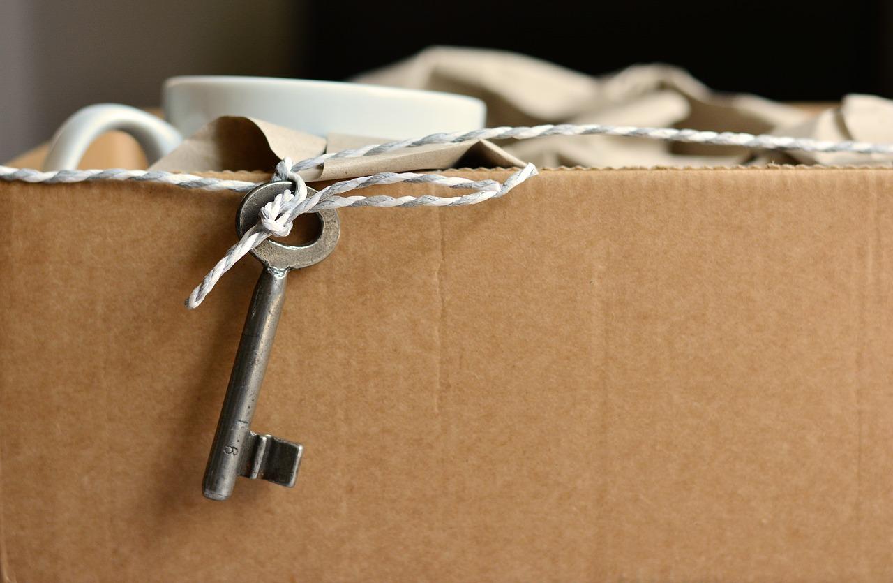 Comment devenir déménageur professionnel ?